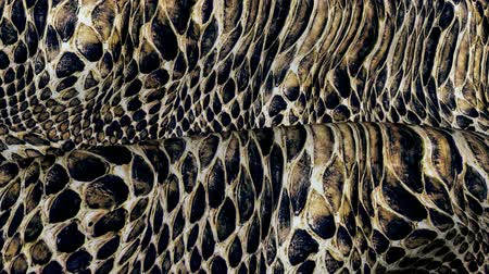 aflição : Snake skin in the movement. Background of the ripples in the wind. Stock Footage