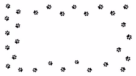 kot i pies : Background with animal paw print. Cartoon comic funny paws. Wideo