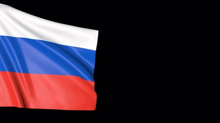 ensign : Background of the flag of Russia. Movement of the fabric with the symbol of the country. Stock Footage
