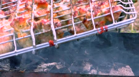 frango : Barbecue meat is roasted in a lattice on the fire. Roasting flesh at rest from the outside. Stock Footage