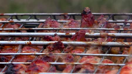 mariníroz : Barbecue meat is roasted in a lattice on the fire. Roasting flesh at rest from the outside. Stock mozgókép
