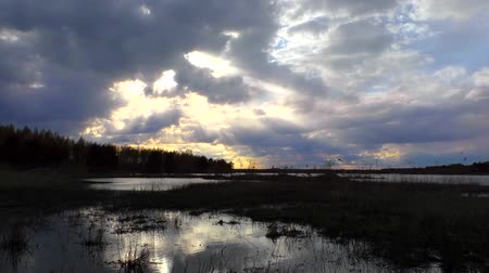 Flying clouds over sunset. Landscape Wildlife of Northern Europe. Wideo