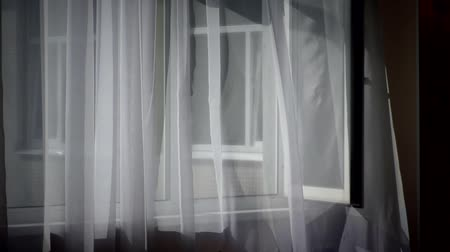 White curtains over the open window. Background of the wind blowing