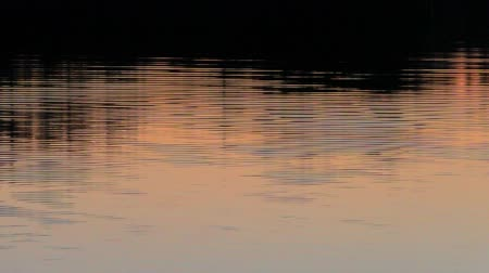 Water landscape at sunset calm evening. Idyllic tranquil scene of a mysterious nature. Wideo