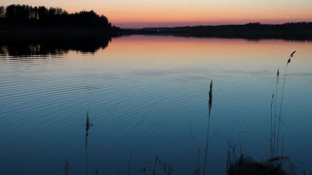 Water landscape at sunset calm evening. Idyllic tranquil scene of a mysterious nature. Filmati Stock