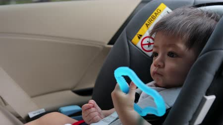 kayış : baby sitting in car seat safety driving of family travel road trips Stok Video