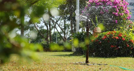 borrifar : sprinkler splashing water in garden