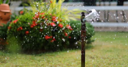 окропляет : sprinkler splashing water in garden