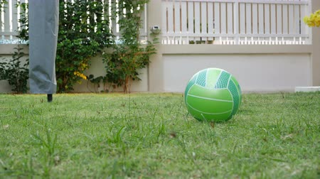 volleyball : green ball on lawn grass turf playground in home