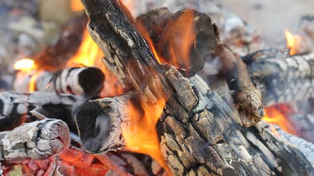 яма : Burning Logs. Fire flame. Hot logs burn together in a hot fire.