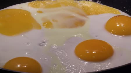 fritos : Poached egg. Fried Egg. Horizontal image of fried eggs in a pan.
