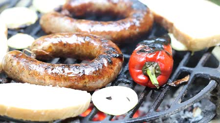 cielęcina : Meat on the barbecue with grillmarks Wideo