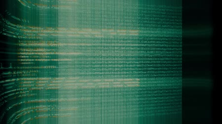 code : Camera move through pieces of software source code Stock Footage