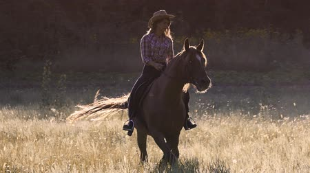terbiye : Beautiful girl in hat riding a horse in prairie at sunset in slow motion