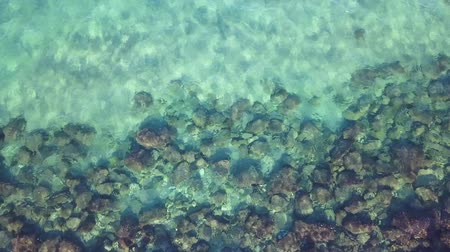 tropikal iklim : Topdown aerial view of calm Clear Sea water washing coral reef rocks.