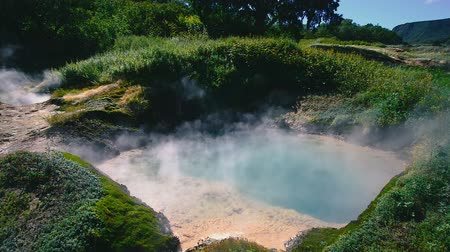 Valley of Geysers. Tourist season in Kamchatka Peninsula. Kronotsky Nature Reserve. The summer stock footage video