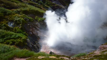 termal : Valley of Geysers. Tourist season in Kamchatka Peninsula. Kronotsky Nature Reserve Stok Video