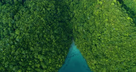 voar : Aerial view flying over the beautiful and tropical green mountains Sugba Lagoon in Siargao, Philippines
