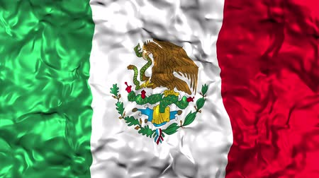 himno : Bandera mexicana ondeando Archivo de Video