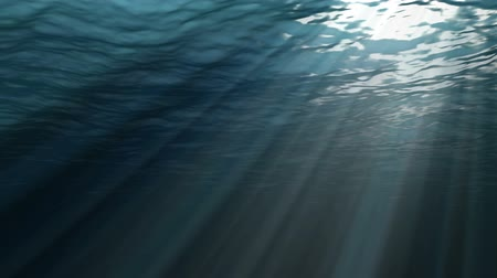 organizma : Blue gentle waves, ocean surface seen from underwater, rays of sunlight shining through water
