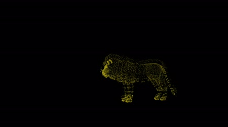 гул : Motion of lion. Silhouette created from particles. Wild predator