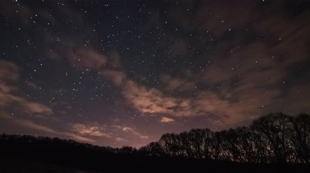 4K Time Lapse Stars Over The Forest
