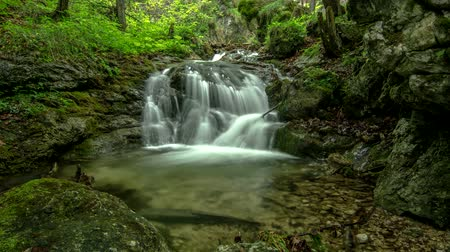 Mountain stream waterfall between rocks deep in the forest 4k time lapse Dostupné videozáznamy
