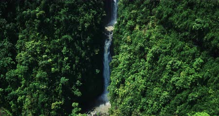 ostrovy : Aerial view revealing waterfall in tropical rain forest jungle Dostupné videozáznamy