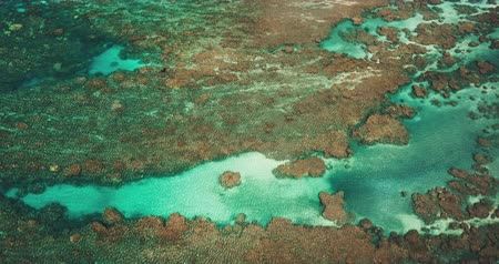šnorchl : Aerial view over tropical blue ocean coral reef seascape