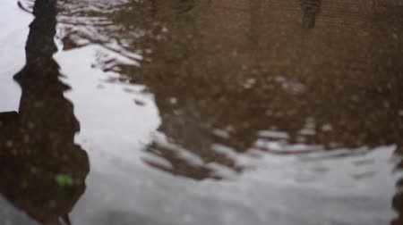 andar : woman stepped on a reflection in a puddle Vídeos