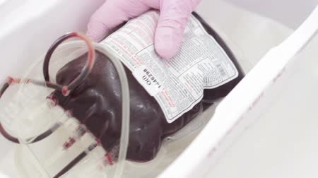пожертвование : Nurse Puts a Blood Bag Into The Container
