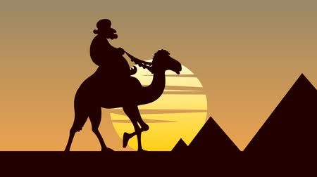 wielbłąd : Camel rider passing by the 3 Giza pyramids