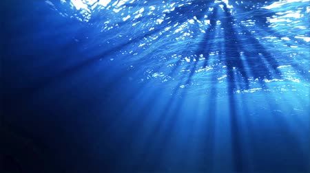 lake sea : Ocean underwater Stock Footage