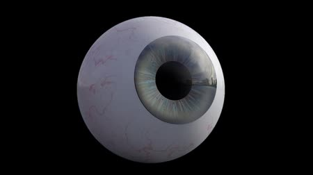 nézett : 3D animation - Human eye looking around Stock mozgókép