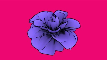 Purple flower on pink background with cartoon style animation