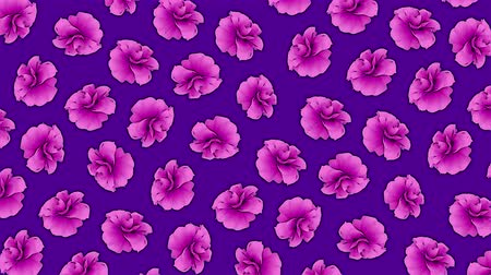 grafický : Pink flowers pattern animation on purple background