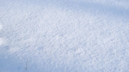pictured : Girl draws heart on snow in Valentines Day Stock Footage