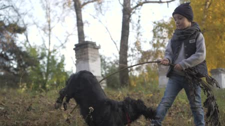 spanyel : Autumn forest with a boy and his dog. black Spaniel