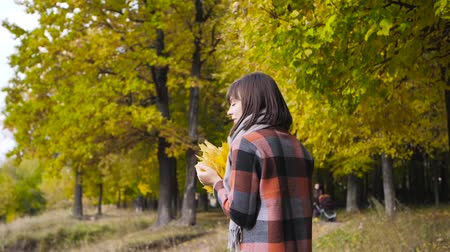 golden falls : bouquet of the yellow leaves. Autumn girl walking in city park. Portrait of happy lovely and beautiful young woman in forest in fall colors. Stock Footage