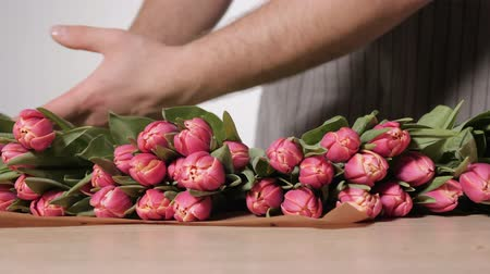 florista : Gardener florist working in a flower shop. Close-up light pink tulip in male hands. Vídeos