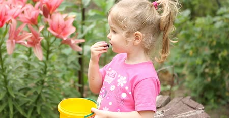 dut : Little girl eat Tasty, appetizing berries of mulberry. She was in the garden on the background of beautiful flowers. Healthy food, fresh air