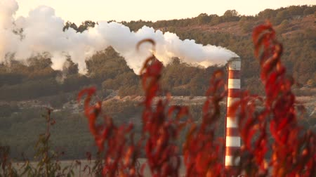 trubka : Industrial factory polluting the air with its steam