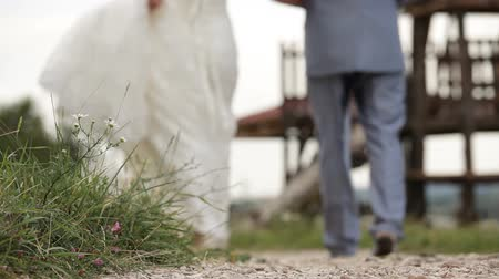weddings : Newly weds walking down a path in a village hand in hand Stock Footage