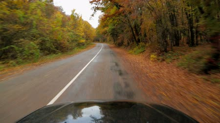 asphalt road : This is a shot from inside of the car, camera is placed on the car windshield of the vehicle. The black car is moving along desert asphalt winding road with dividing line and trees and bushes in autumn colour by roadsides at the dusk.