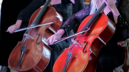 cselló : CLOSE UP SHOT of two violinists playing cello at concert of symphony music. Stock mozgókép