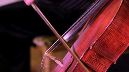 cselló : Side video shot captured during classic music concert demonstrating hands of young female musician gracefully playing the cello at the concert.