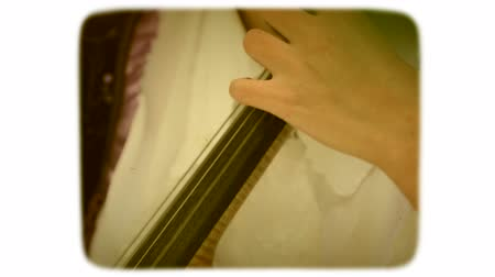 sepia : camera is transferred from neck to the body of the contrabass. woman is musician