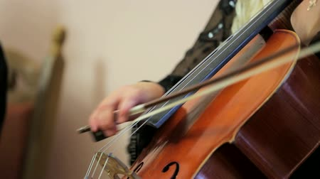 Woman playing the double bass Stok Video