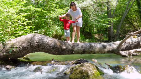 Mom and Son are walking on a log that fell across the river to sit on it. Stok Video