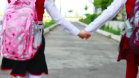 educar : Little student girls going to school Stock Footage